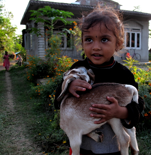 gilirl with goat